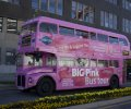 Big Pink Sightseeing - Saint John, NB
